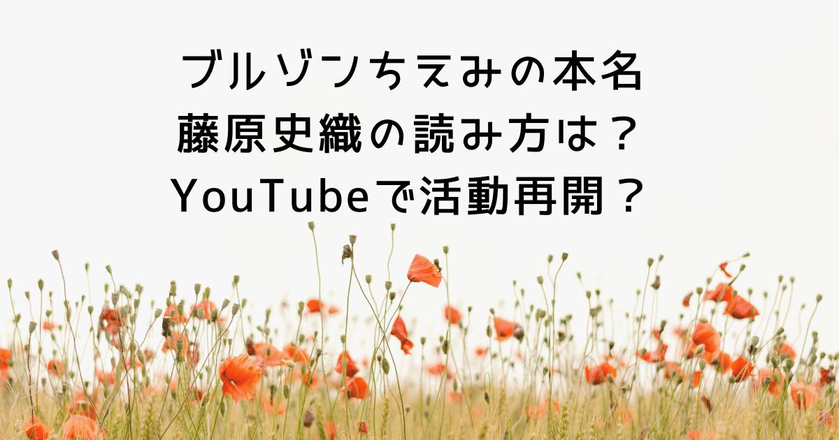 ブルゾンちえみの本名藤原史織の読み方は?YouTubeで活動再開?