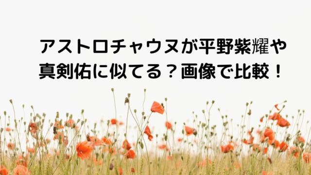 アストロチャウヌが平野紫耀や真剣佑に似てる?画像で比較! (1)